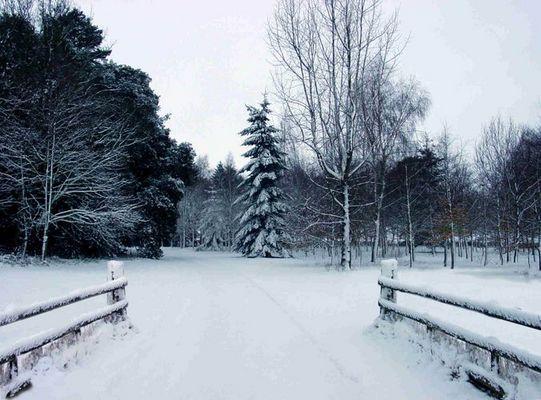 winter, Brecon, Wales