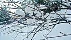Winter. ;D