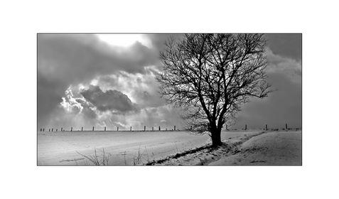 7.12.-13.12. - Winter