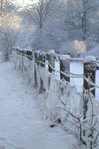 Winter die 2.