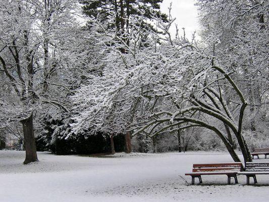 winter dream II