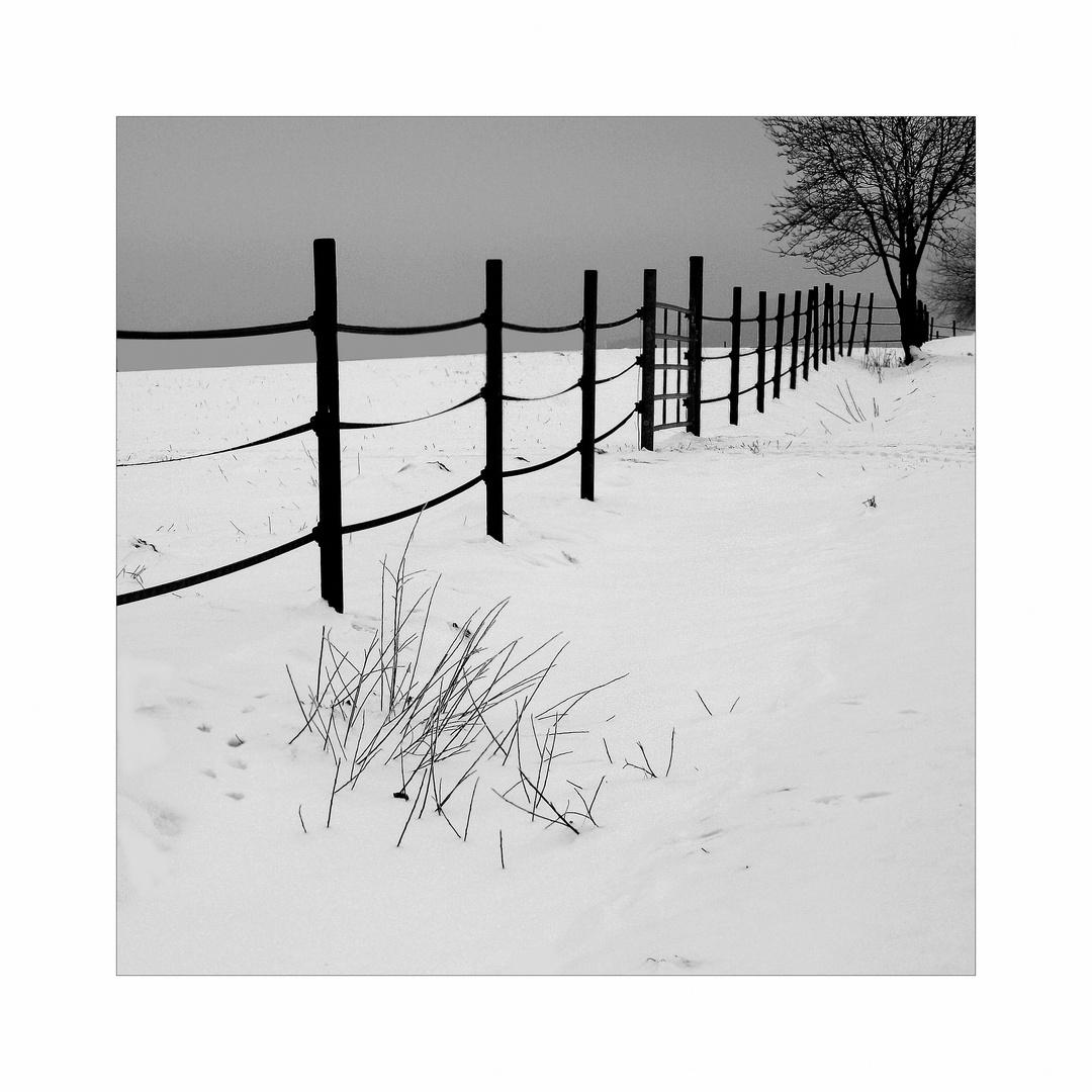 Winter- drinnen wie draußen