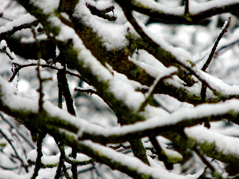 Winter eben...
