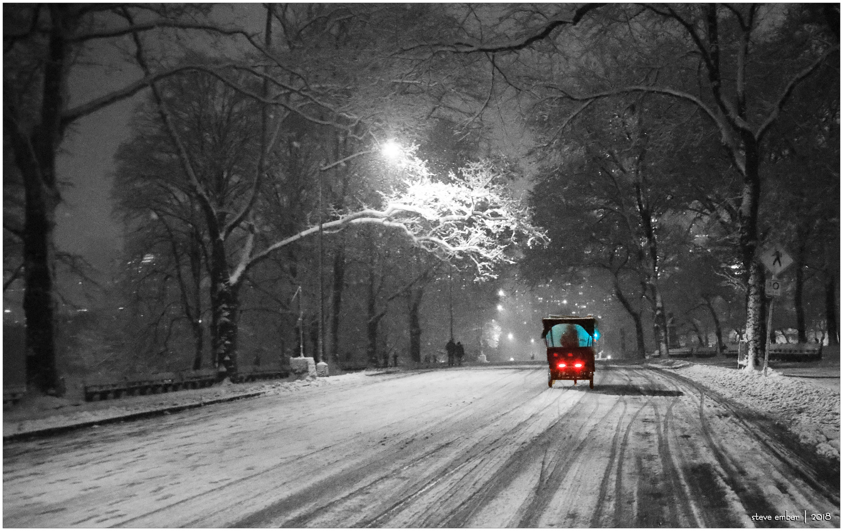 Winter Enchantment in Central Park
