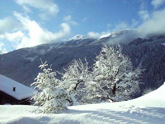 """"""" Winter Erinnerungen """""""