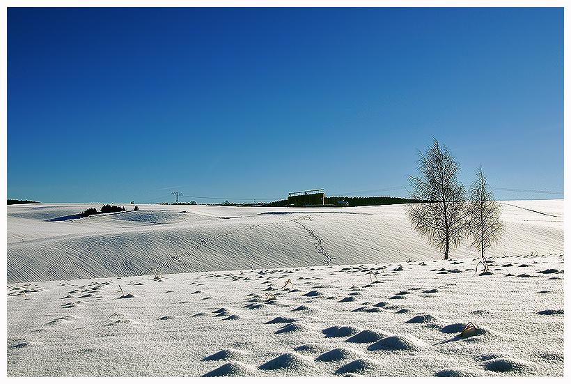 Winter halt