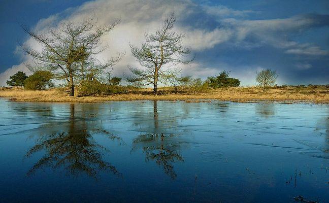 Winter hike on the heathland (11)