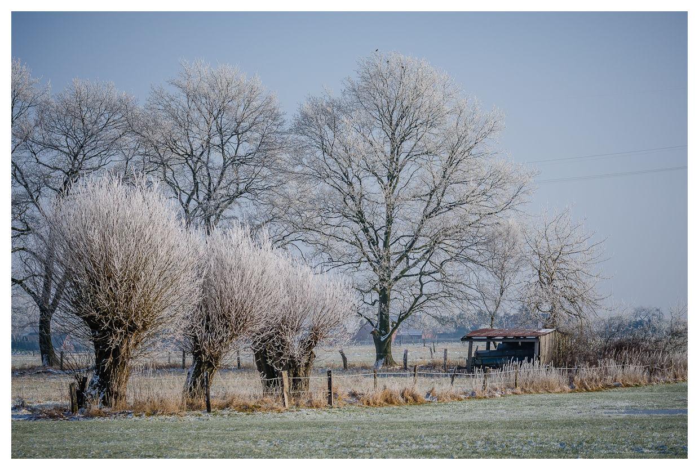 > Winter-Idylle
