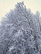 Winter Idylle an der Autobahnauffahrt Boxberg morgens kurz nach halb sieben