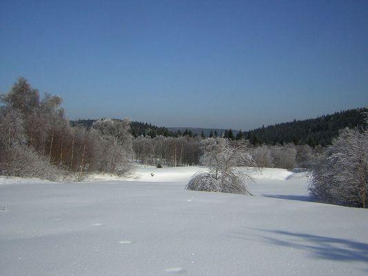 Winter im 4. Monat