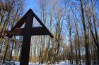 Winter im Aachener Wald