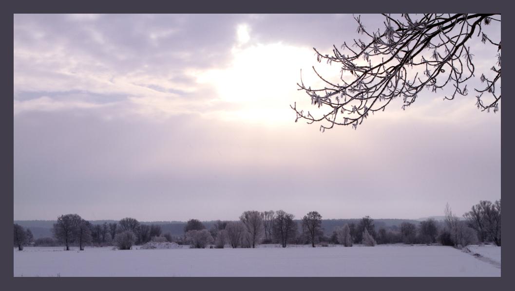 Winter im Aischgrund