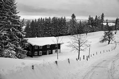 Winter im Allgäu I