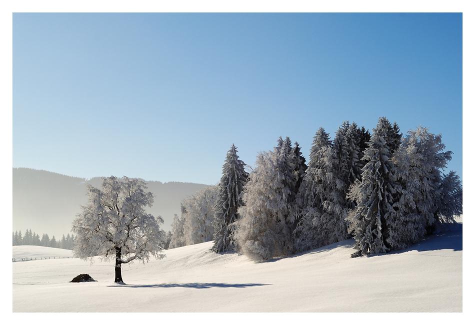 Winter im Ammergau
