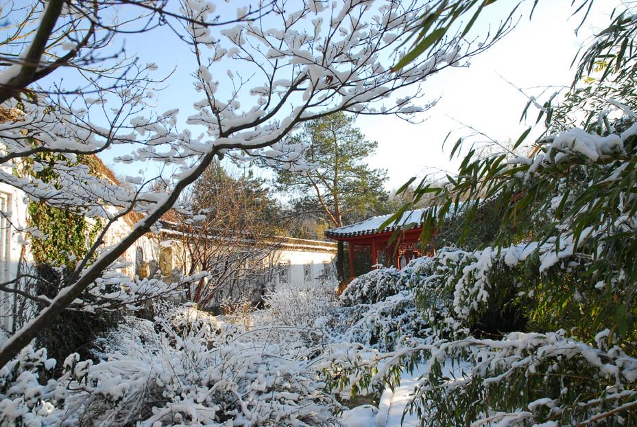 Winter im (Berliner) China