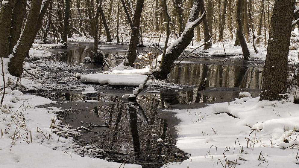 Winter im Briesetal