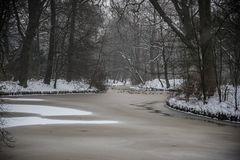 Winter im Bürgerpark