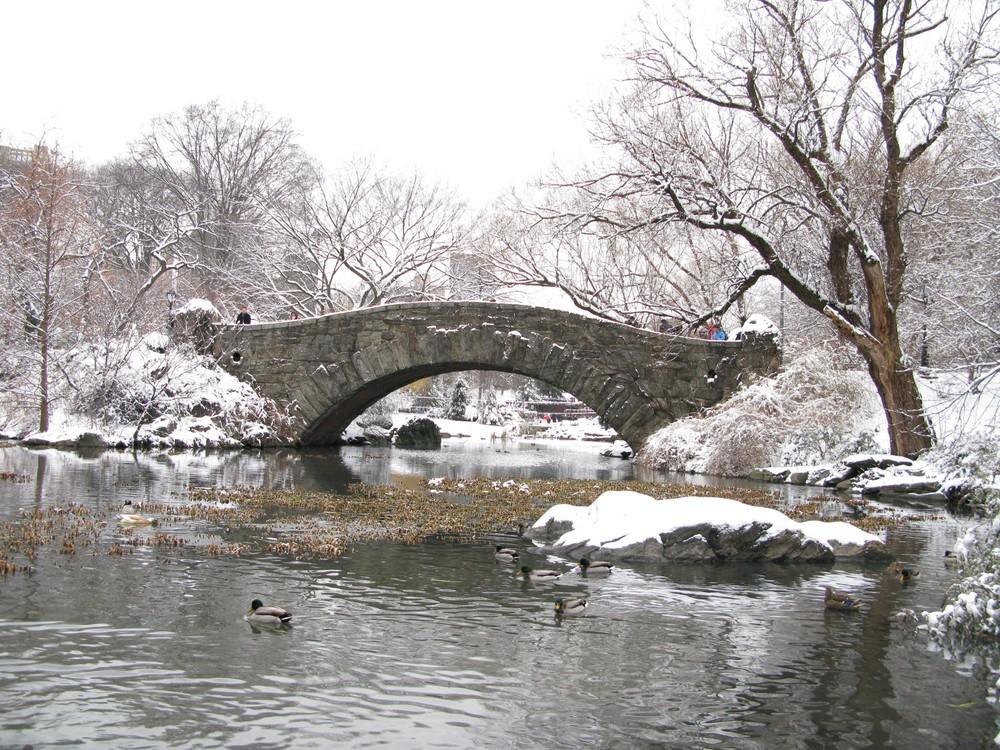 Winter im Central Park.....