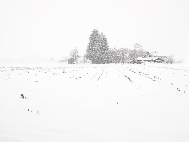 Winter im Chiemgau 1