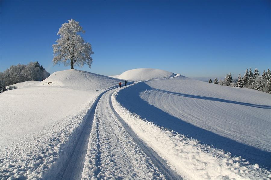 Winter im Emmental