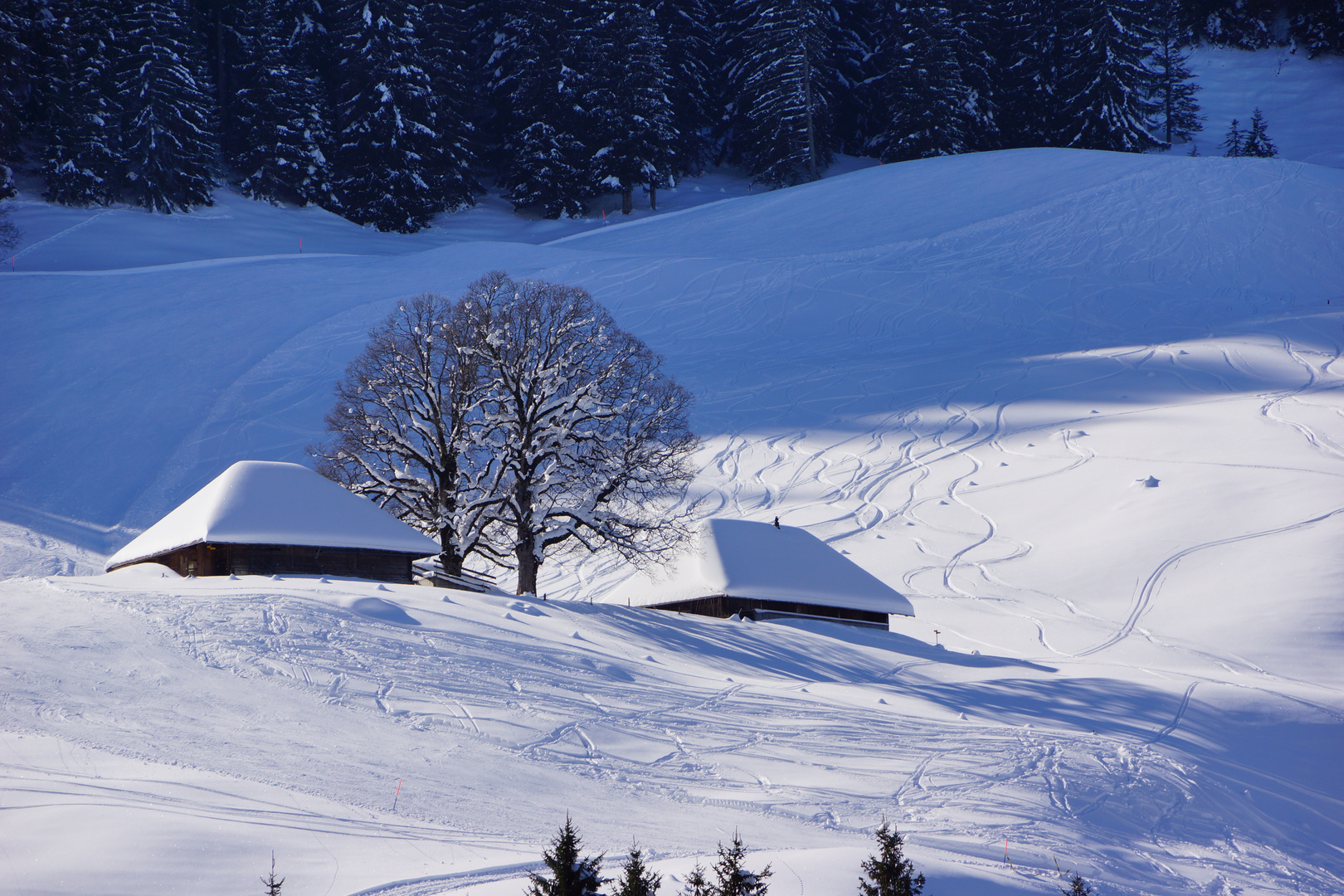 Winter im Emmental_01