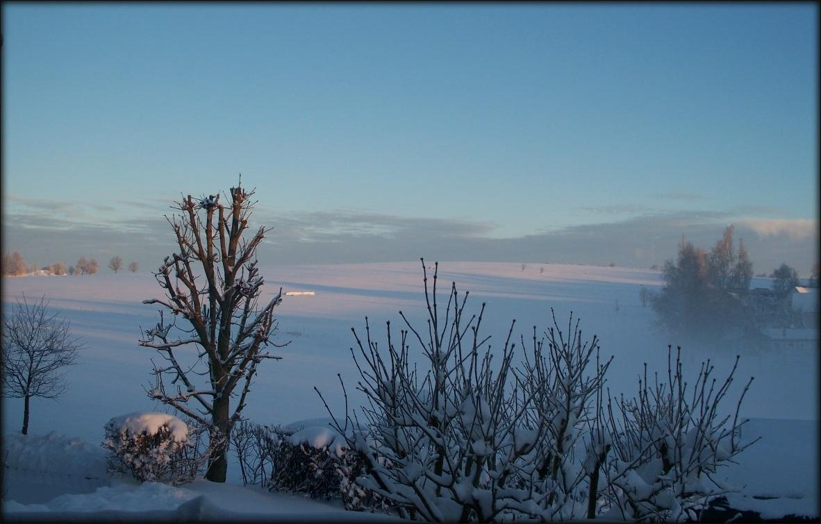 Winter im Erzgebirge / 2