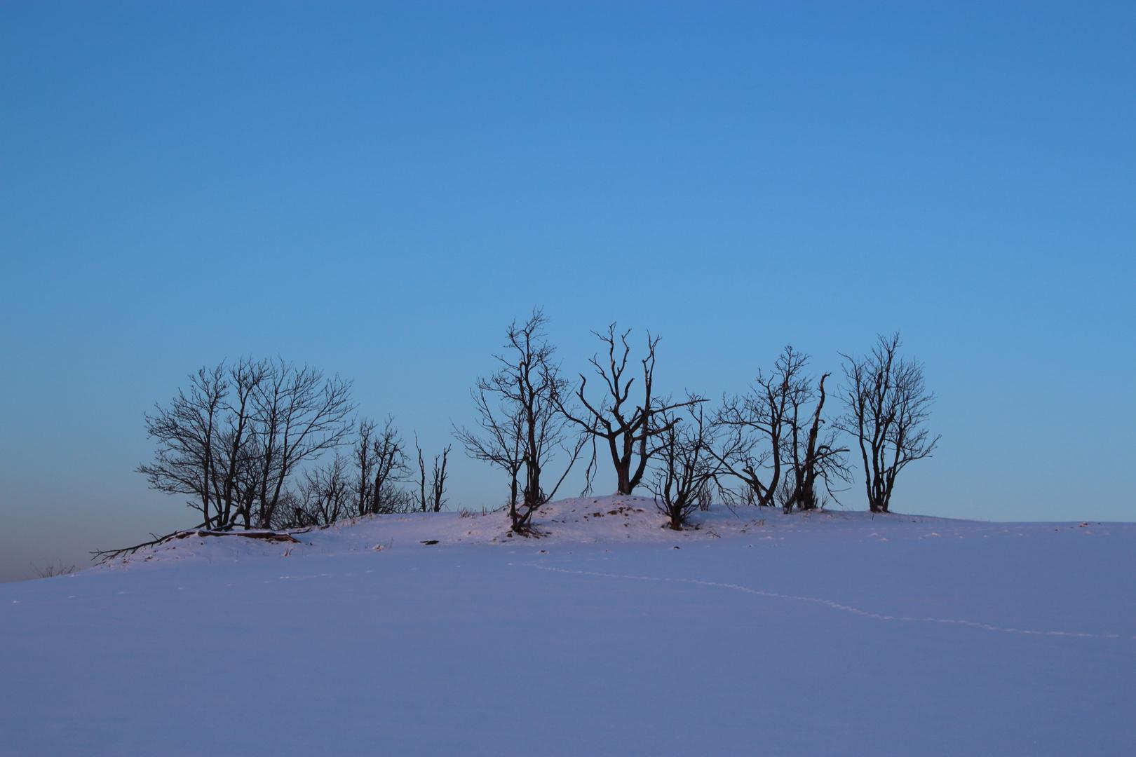 Winter im Erzgebirge Kühnheide