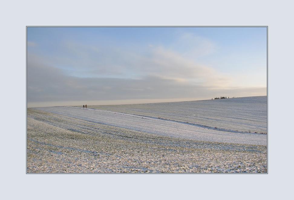 Winter im Feld