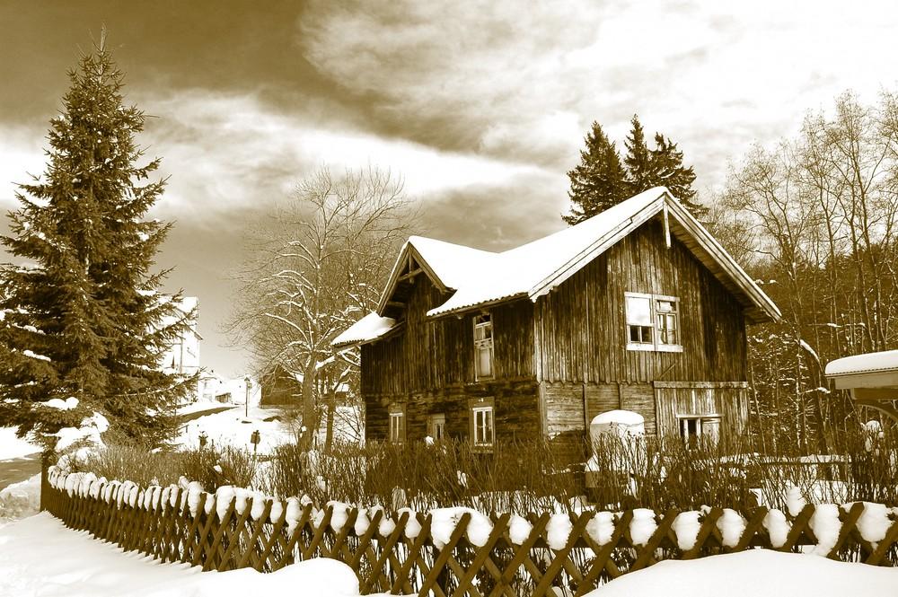 Winter im Harz 08
