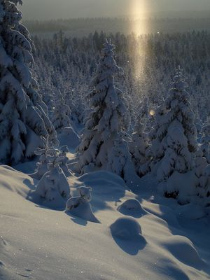 Winter im Harz #1 - Brocken unter Eiskristallen