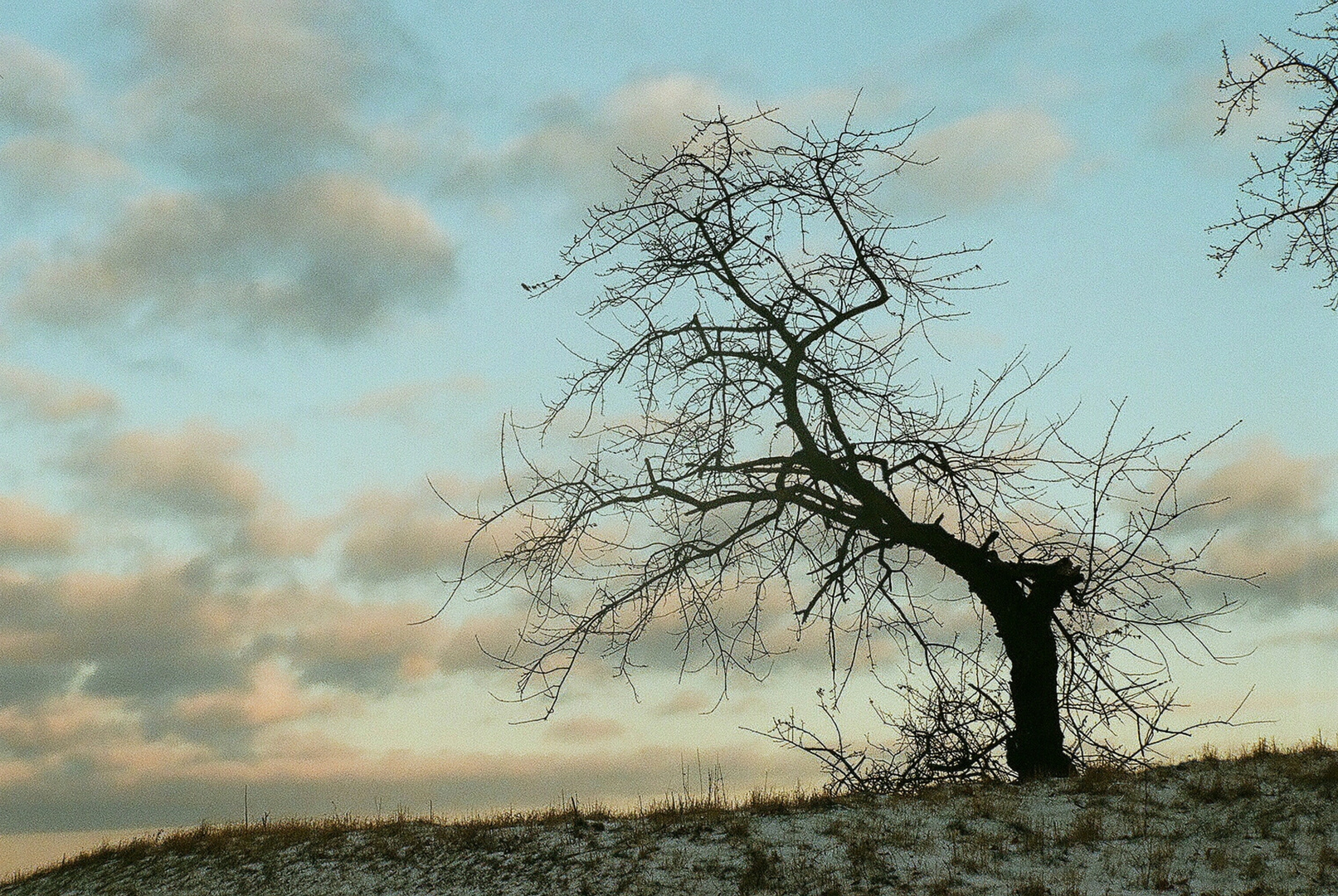 Winter im Harz 3