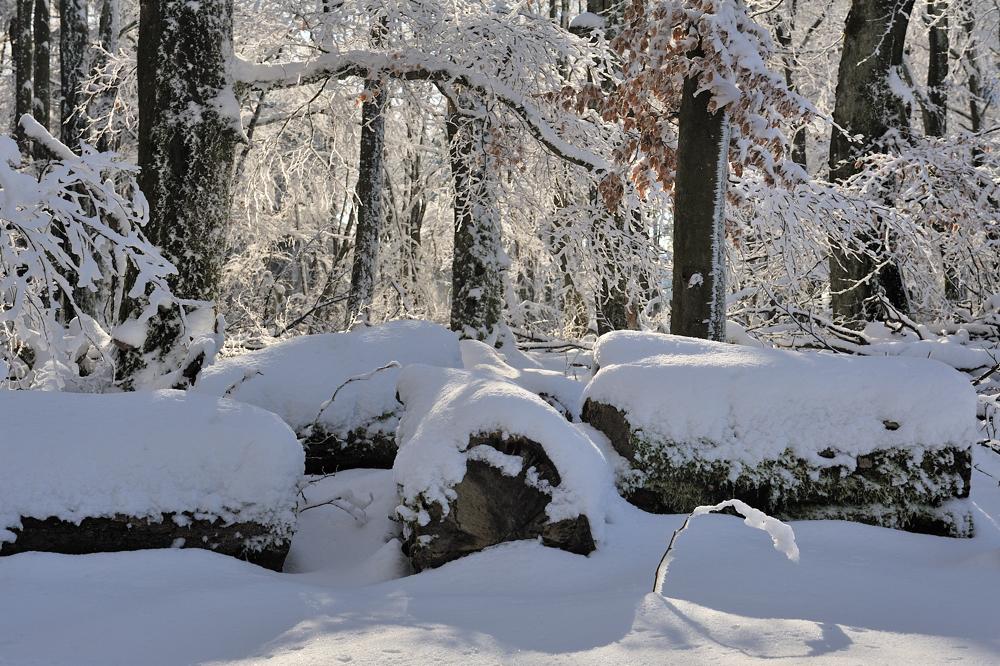 *Winter im Hochwald III*