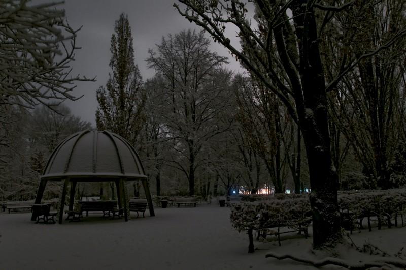 Winter im Humboldthain (02)