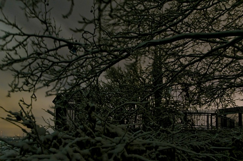Winter im Humboldthain (03)