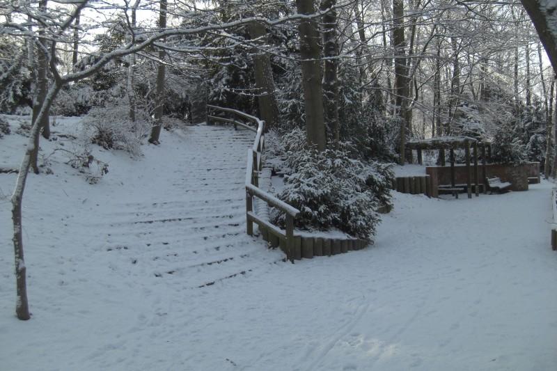 Winter im Humboldthain (08)