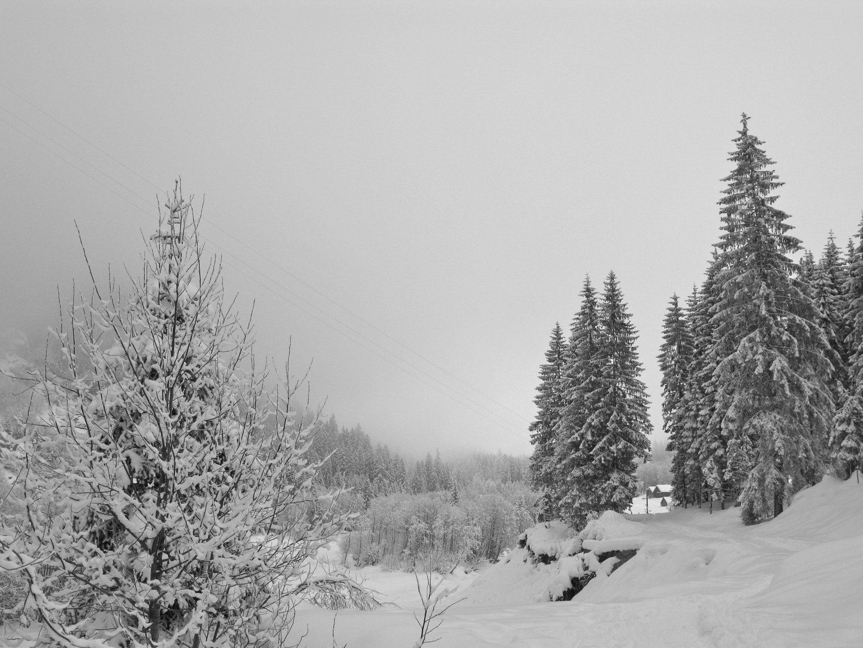 Winter im Maderanertal