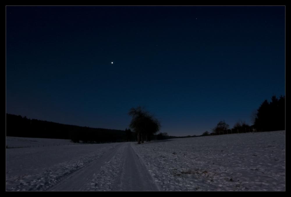Winter im Mondlicht