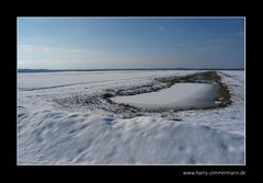 Winter im Moor (4)