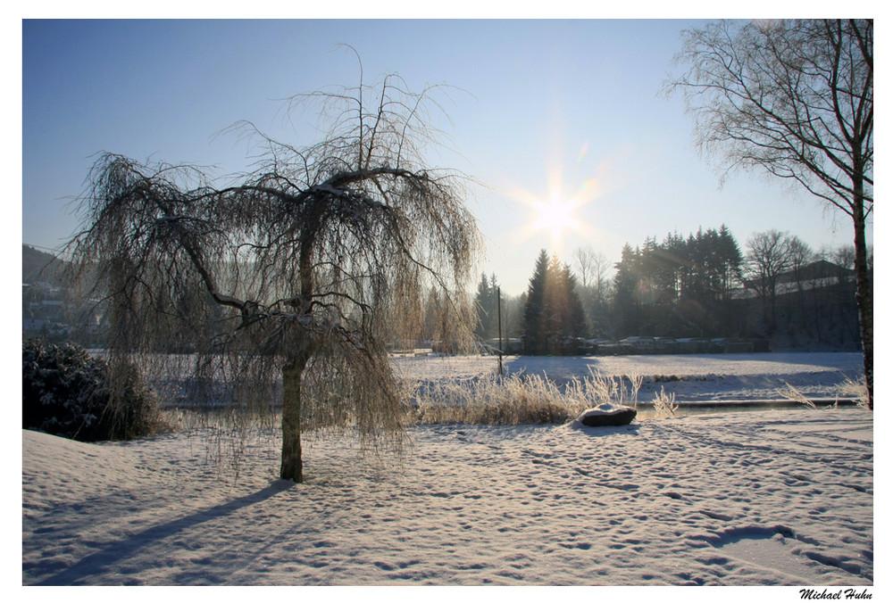 Winter im Morgengrauen