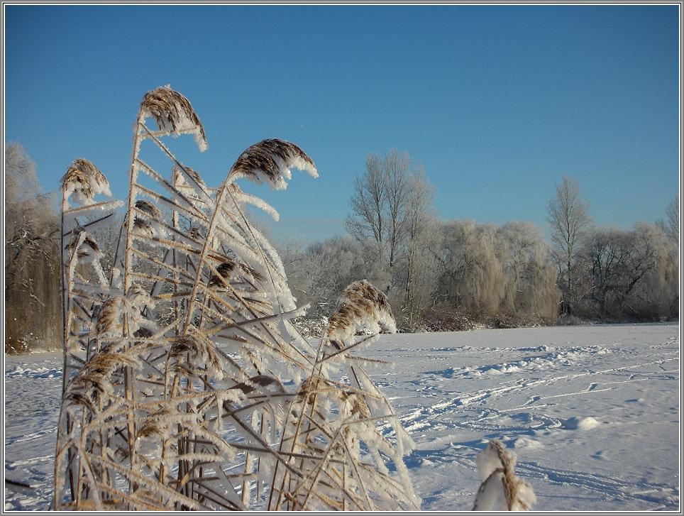 Winter im Muldental