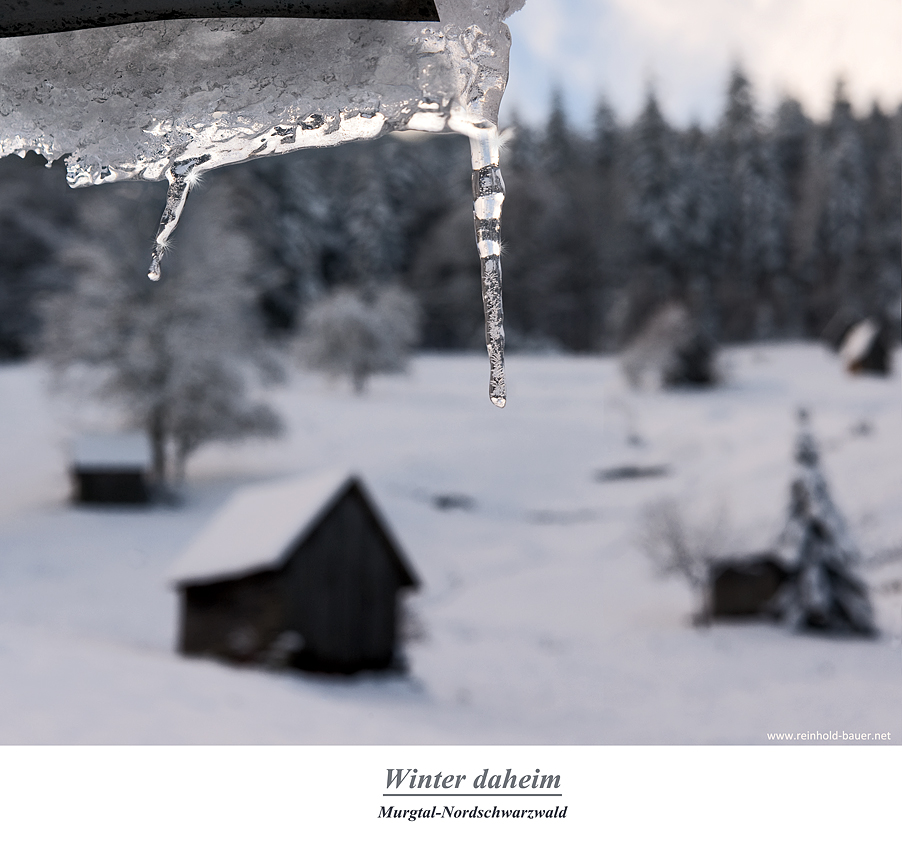 Winter im Murgtal