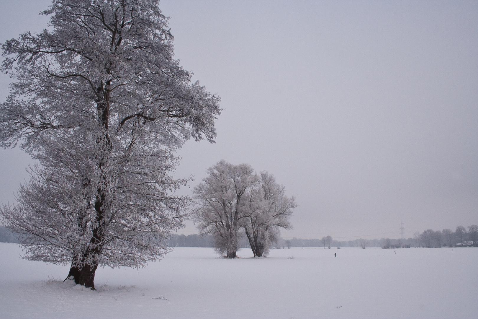 Winter im Osnabrücker Land