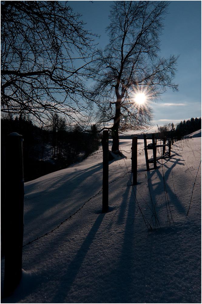 Winter im Ostallgäu