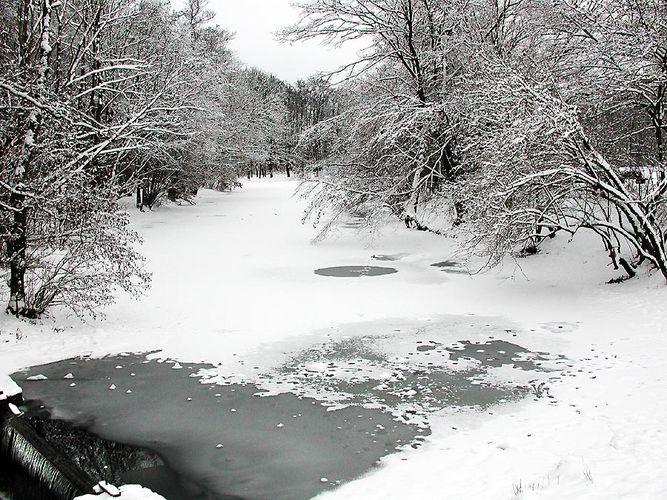 Winter im Park 2
