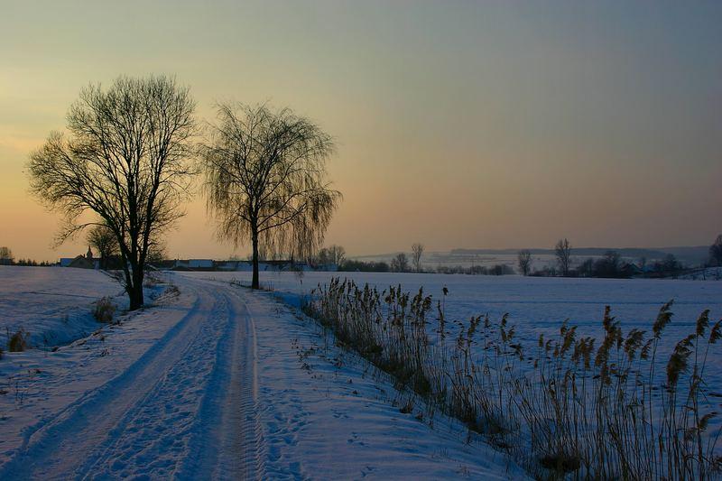Winter im Pommersfelden (Deutschland)