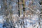 Winter im Ruhrgebiet 02