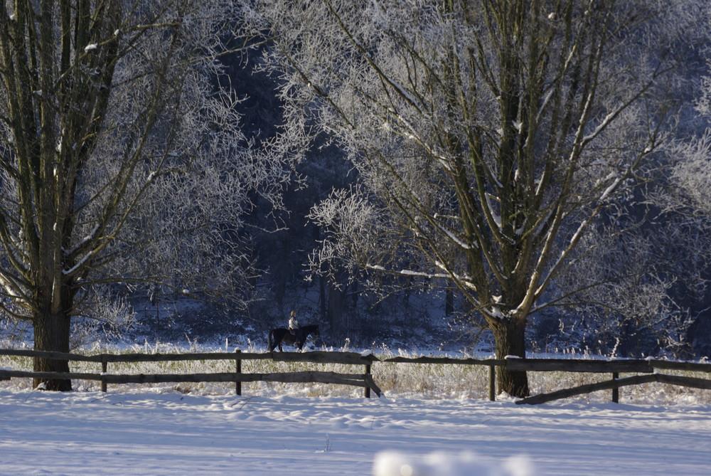 Winter im Ruhrgebiet - Teil 1
