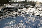 ... Winter im Ruhrpott, lange vermisst
