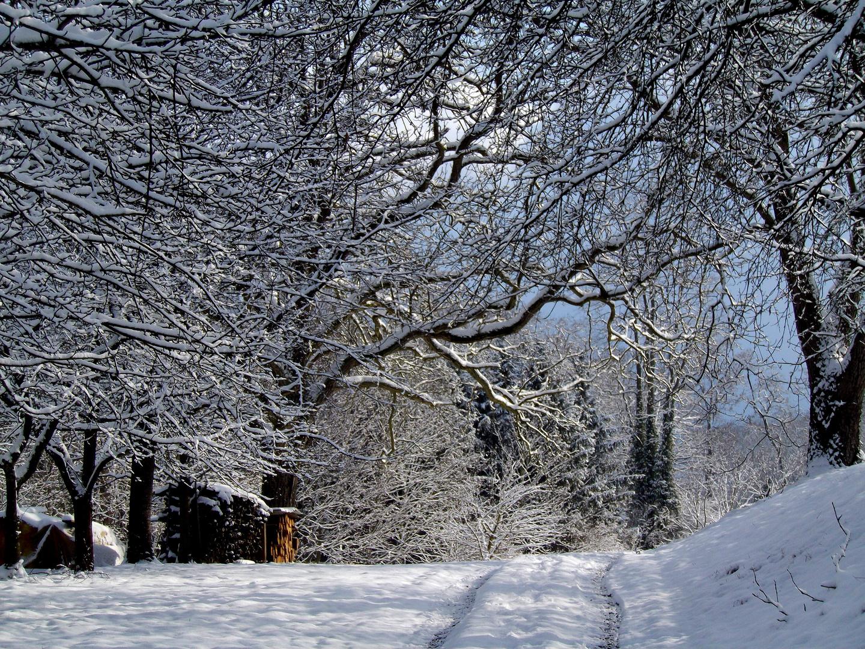 Winter im Ruschgraben
