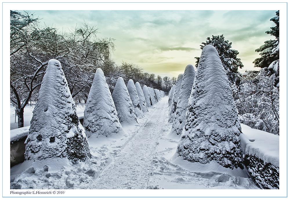 Winter im Schlossgarten